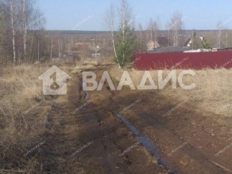 selo-bolshoe-mokroe-kstovskiy-rayon фото