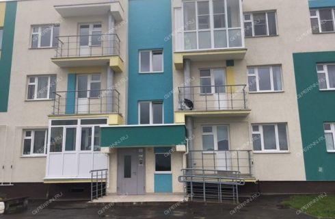 1-komnatnaya-derevnya-novinki-bogorodskiy-rayon фото