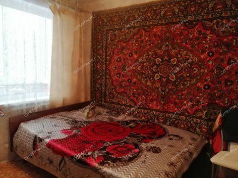 3-komnatnaya-derevnya-berezovka-arzamasskiy-rayon фото
